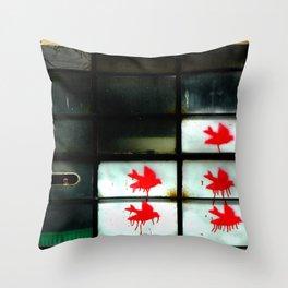 My dear Window pane... Throw Pillow