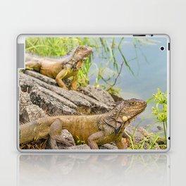 Iguanas at Shore of River Laptop & iPad Skin