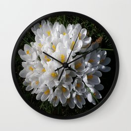 WHITE SPRING CROCUSES Wall Clock