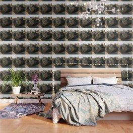 Deborah Wallpaper