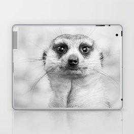 Meerkat portrait Laptop & iPad Skin