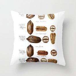 Nuts - Fruit Illustration Throw Pillow