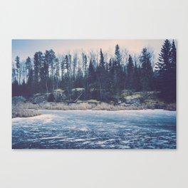 Earthlike World I Canvas Print
