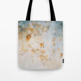 Driveway #1 Tote Bag