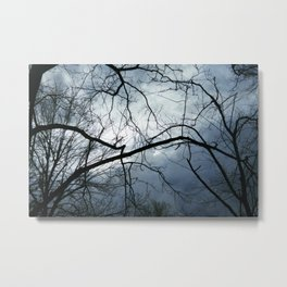 Internal Tug of War Metal Print