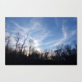 Goucher Woods Canvas Print