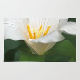 Trillium Flower Rug