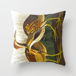 American Bittern Vintage Bird Art Throw Pillow