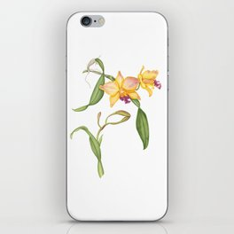 Flowering yellow cattleya orchid plant iPhone Skin