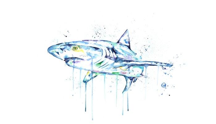 Shark - Toothy Pillow Sham