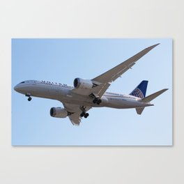 United 787-8 Canvas Print