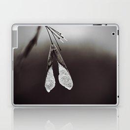 Maple Seed on Chocolate Brown Laptop & iPad Skin