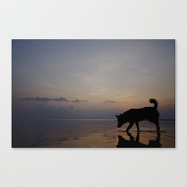 Sunset Hunter, Ko Samui, Thailand (2 of 2) Canvas Print