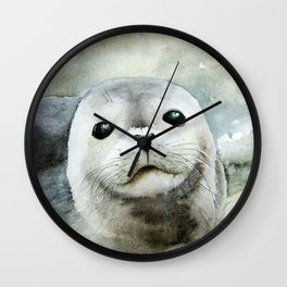 Curious seal on the pebbles Wall Clock