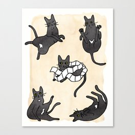 Little Stinker Canvas Print
