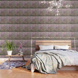 textured wall for background and texture Wallpaper