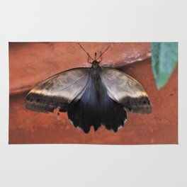 Forest Giant Owl Butterfly Rug