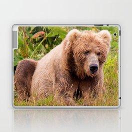 Brown Bear Kodiak Laptop & iPad Skin