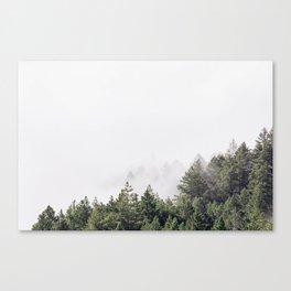 forest / mt. tamalpais Canvas Print