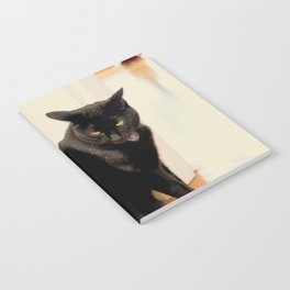 Any Witch Way Notebook