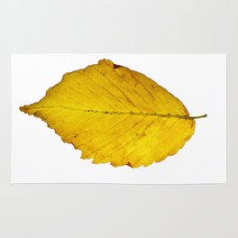 Leaf Isolated Rug
