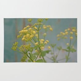 Yellow wildflowers on blue rusty metal Rug