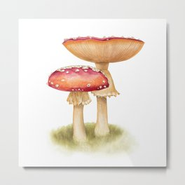 Mushroom Painting   Fly Agaric   AMANITA MASCARA   Watercolour Metal Print