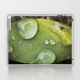 Raindrops on a green leaf Laptop & iPad Skin