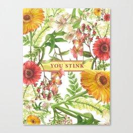 You Stink Canvas Print