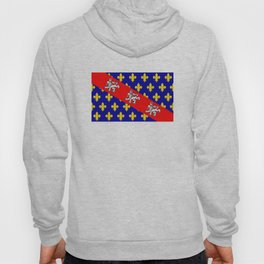 marche region flag france province Hoody
