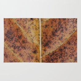 Dry old leaf Rug