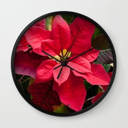 Red and Green Poinsettia Photography Print Wall Clock
