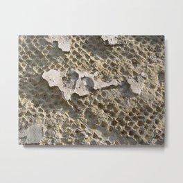 Herculaneum Metal Print