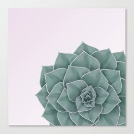 Big Green Echeveria Design Canvas Print