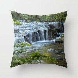 Ledge Falls, No. 4 Throw Pillow