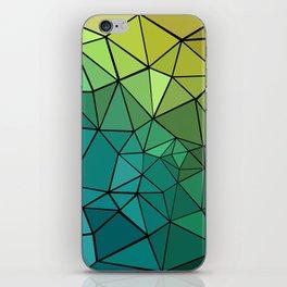 BEAUTIFUL CHAOS iPhone Skin