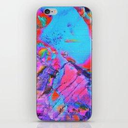 Computerlove iPhone Skin