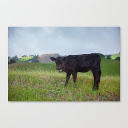 Sound Of Moosic Canvas Print