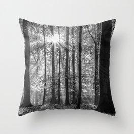 Beech Wood Sunrise Throw Pillow