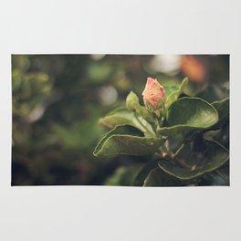 Capullo de Hibisco - Hibiscus bud Rug