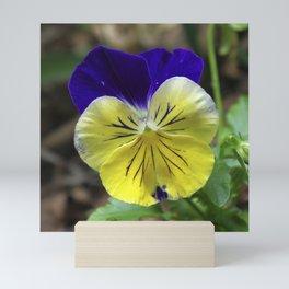 Vivid Viola Mini Art Print