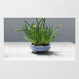 Golden Blue-Eyed Grass Rug