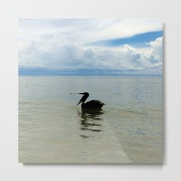pelican belts out a tune... Metal Print