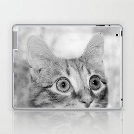 What's New KittyCat Laptop & iPad Skin