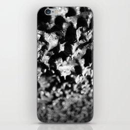 Lava tube cave iPhone Skin