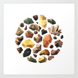 Rock Collection Art Print