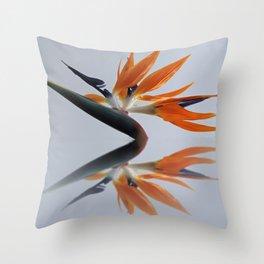 The bird of paradise flower Throw Pillow