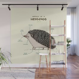 Anatomy of a Hedgehog Wall Mural