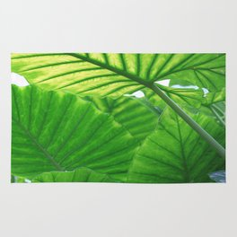 tropic leaves Rug