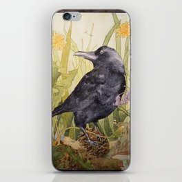 Canuck the Crow iPhone Skin